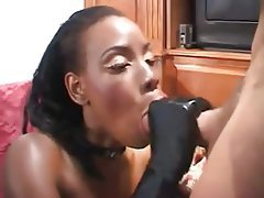 Blowjob, Hardcore, Interracial, Pornstar