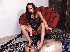 Asian, BDSM, Femdom, Foot Fetish