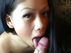 Asian, Blowjob, Brunette, Handjob
